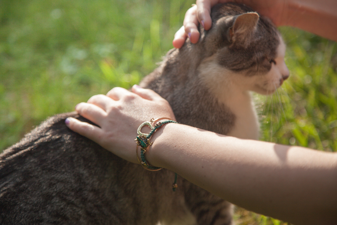 Kot w ogrodzie biżuteria